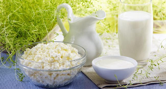 7 фактора за био краве киселото мляко, които не знаете